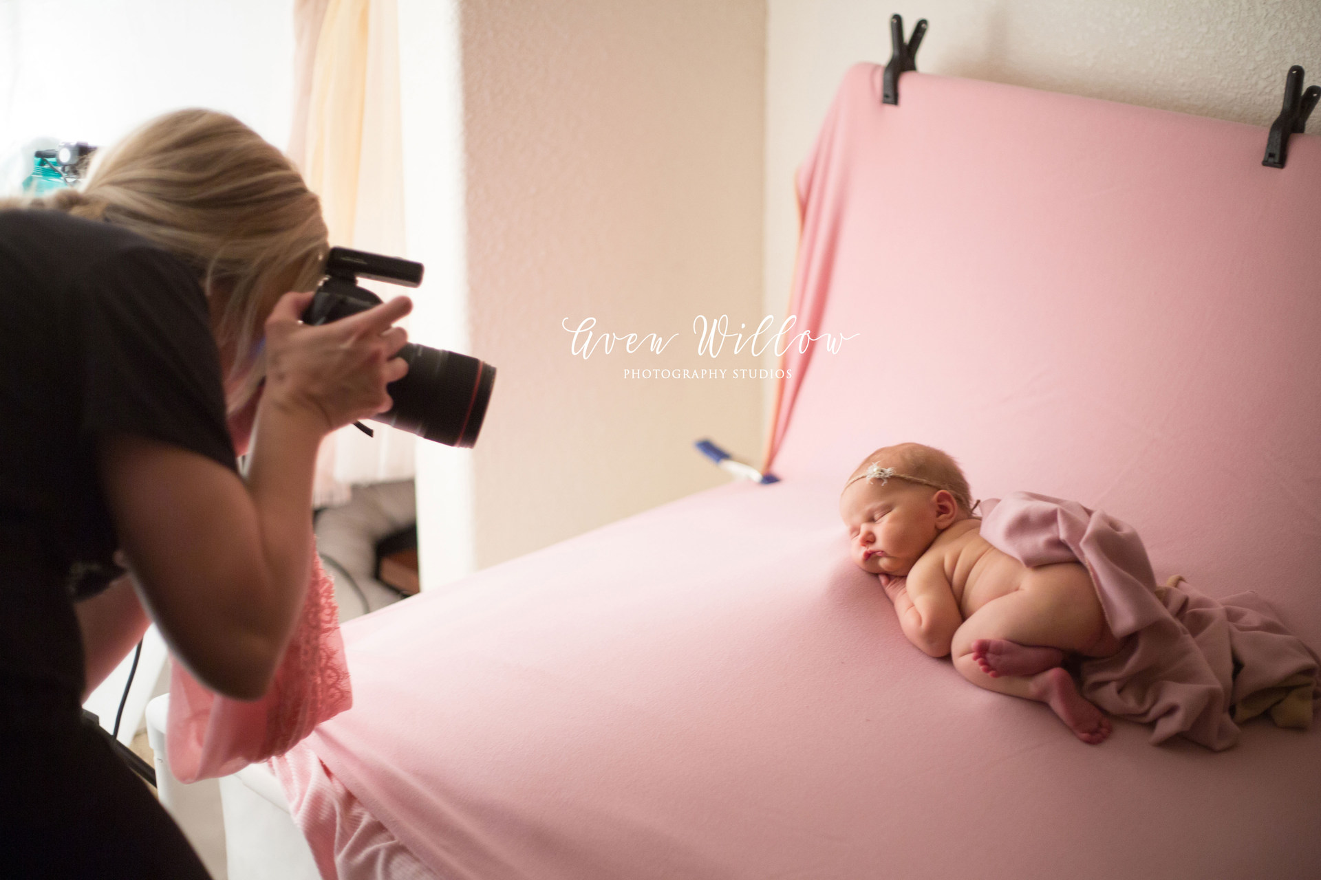 utah county newborn photographer