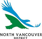 DNV NEW LOGO, COLOUR.jpg