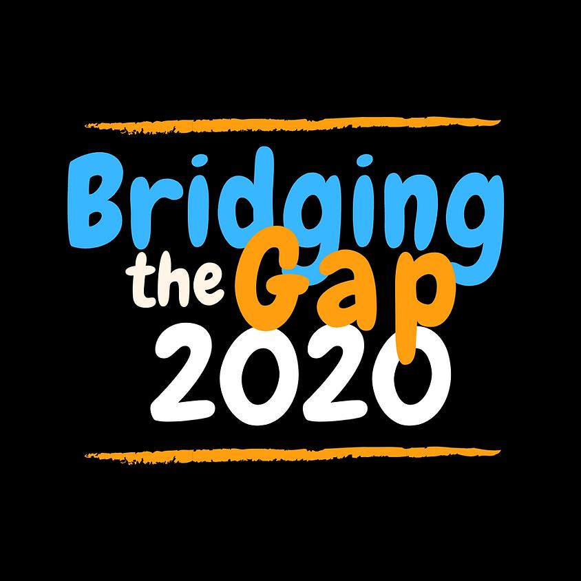 Bridging the Gap 2020 Helper