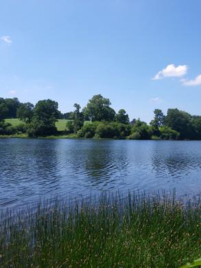 Lac de Bosméléac - Allineuc