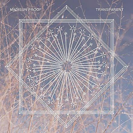 transparent album art_edited.png