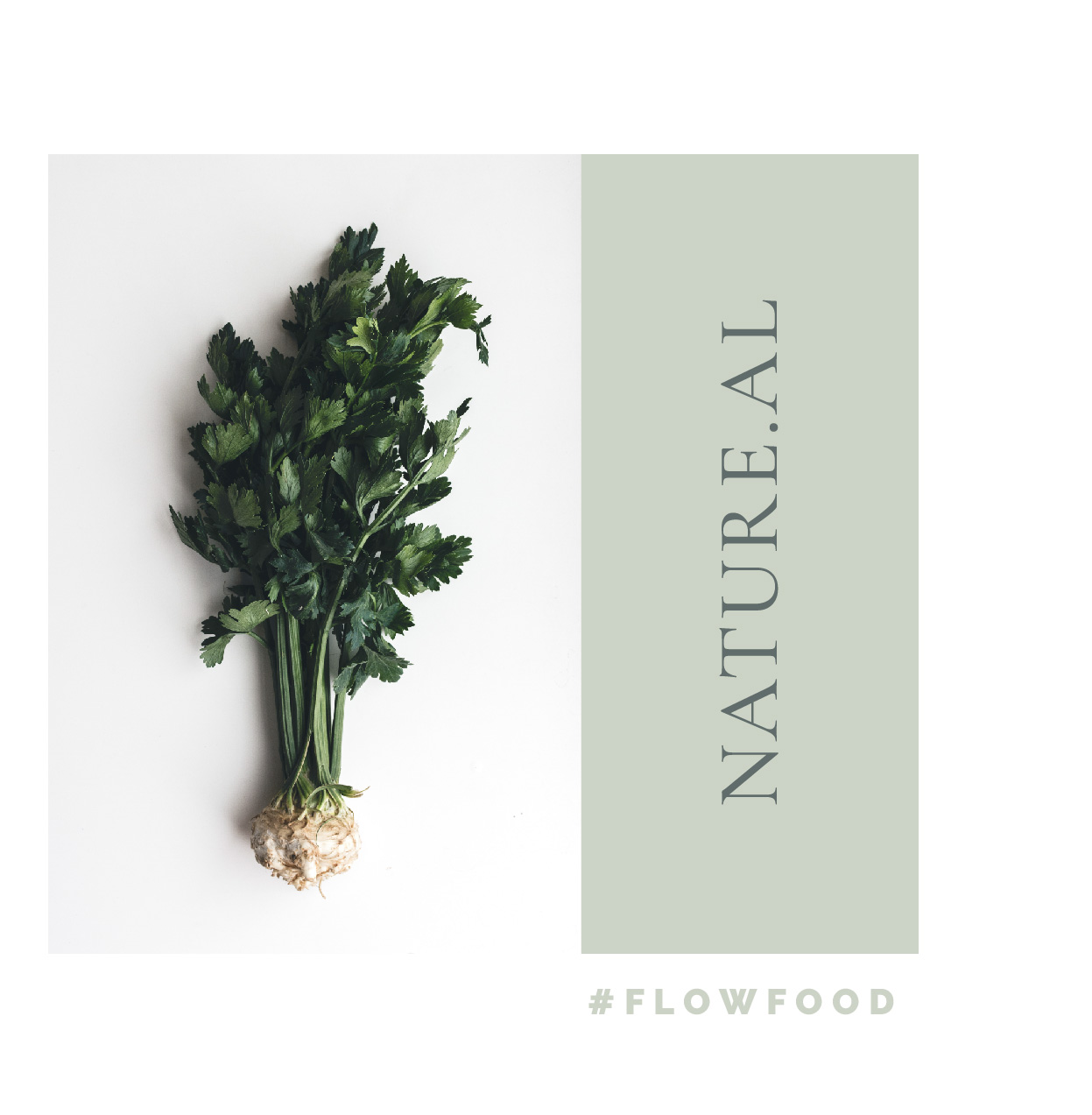 focusflowfood_natureal_food_organic