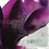 Thumbnail: Violet