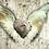 Thumbnail: Cuore con le ali 1