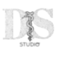 logo DS Studio.png