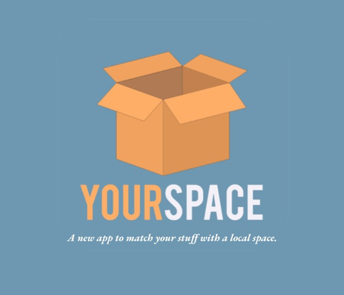 """""""YourSpace"""" Sales Pitch"""