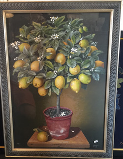Escofet Lemon