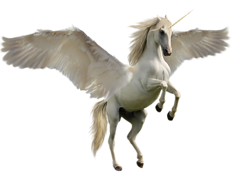 unicorn_PNG46.png