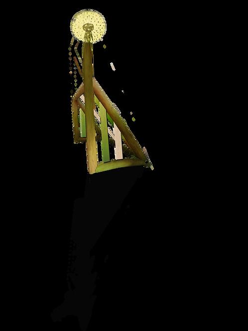 Paardenbloemgoal pluis
