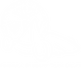 White logo FSTD.png