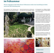 Felsenburg 2018 Infobulletin.jpg