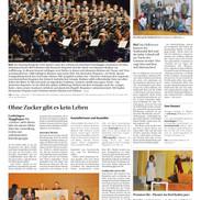 EvilArt Nov 2015 Bieler Tagblatt.jpg