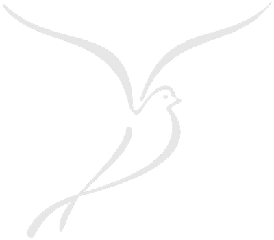 Dove_edited_edited_edited.png