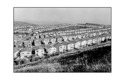 Little Boxes. Daley City, CA.