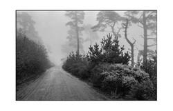 Inverness Ridge