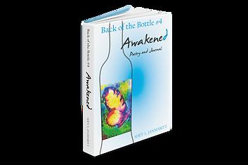 book-cover-janmaritt-awakened.png