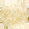 Logo-Tree-web-small.png