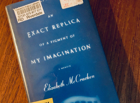 Perinatal Therapist's Book Review: Elizabeth McCracken