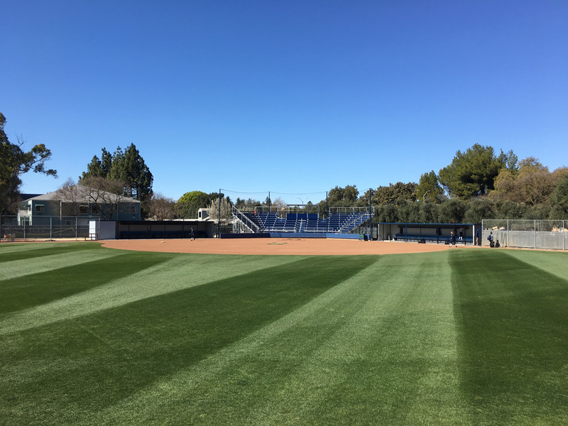 UC Davis Softball.jpeg