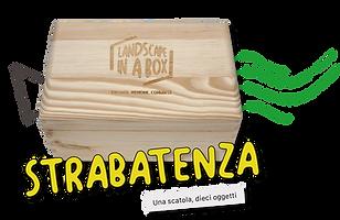 Bottone Strabatenza Landscape in a box D