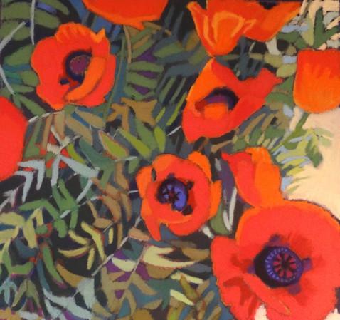 PoppiesGrowing18x18.JPG