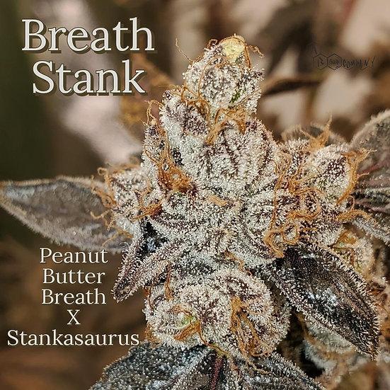 A.B. SEED COMPANY-  BREATH STANK