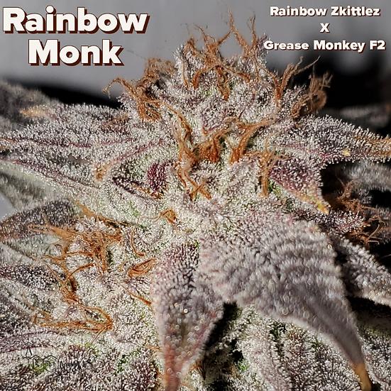 A.B SEEDS -  RAINBOW MONK