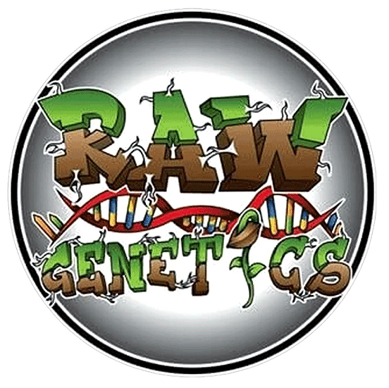 RAW GENETICS- GMO PIE