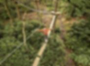 treetop-adventure-activity-days-out.jpg
