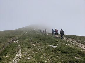 Heading into the mist (BEE-Adventures).jpg