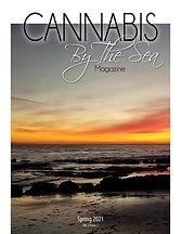 CBTS_Volume 2_Issue 1_Cover.jpg