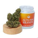 AutumnBrands_BlueDreamCBD.jpg