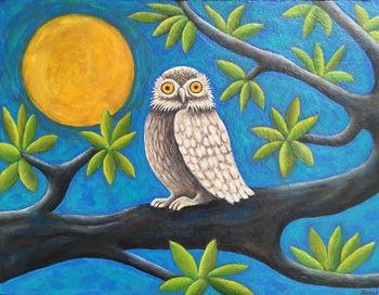 Ollie The Owl Kaiser.jpg