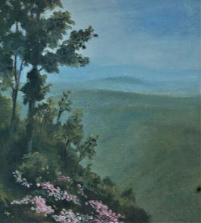 k bowser blue valley spring 18x24 O 895.