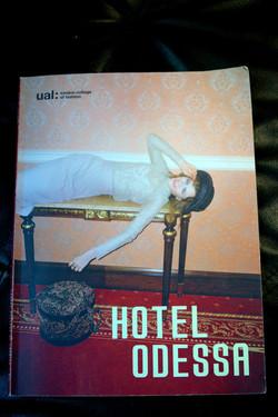 Портфолио -  проект Hotel Odessa