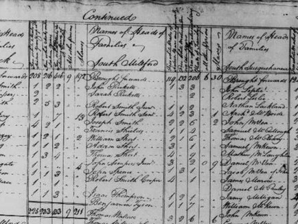 What is the Federal Census and How is it Used?