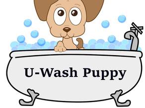 Meet Our Partner: U-WASH PUPPY