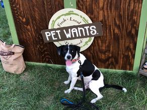 Meet Our Partners: Pet Wants Olathe
