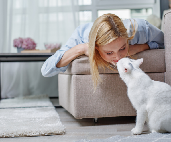 people who owned a cat were 40% less likely to die of a heart attack than non-cat owners