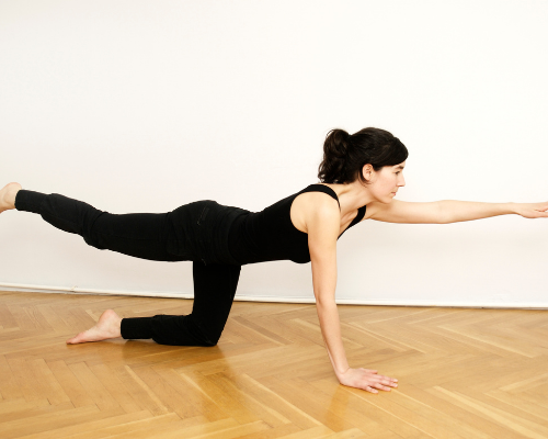 The Bird Dog Stretch  is another fantastic exercise for strengthening your core muscles, using both the abdominals and the back muscles.