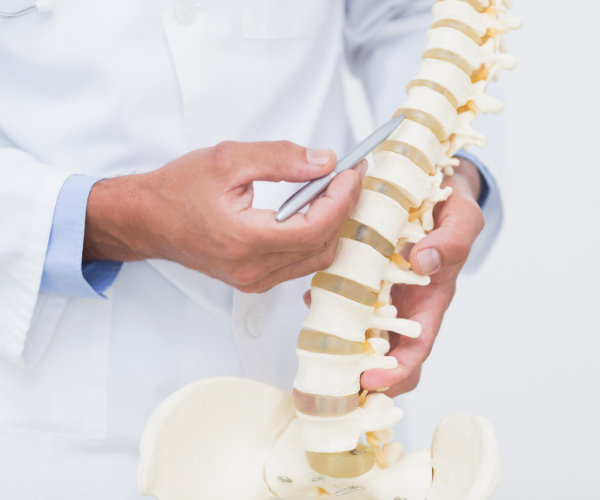 Orthopedic doctors specialize in musculo-skeletal issues within the body
