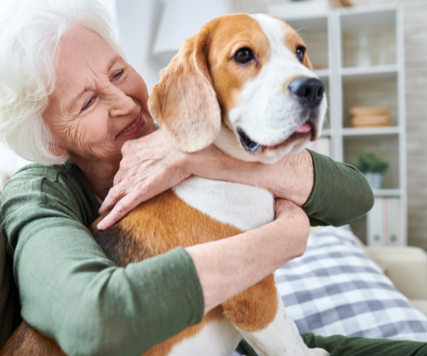 Owning a pet can help you manage your chronic pain better.