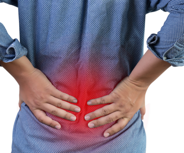 LivaFortis looks at guidelines from the WHO, European guidelines, VA guidelines and AAFP and found that they are all fairly similar in treatment recommendations for chronic low back pain.