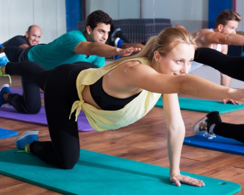 The bird dog stretch is an excellent low back stretch for all levels of fitness.