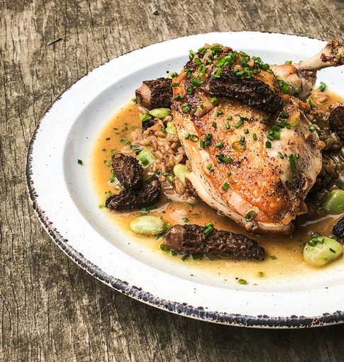 airline cut chicken with morels and farro risotto, lima beans