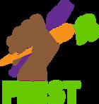 feest_basic_logo_color.png