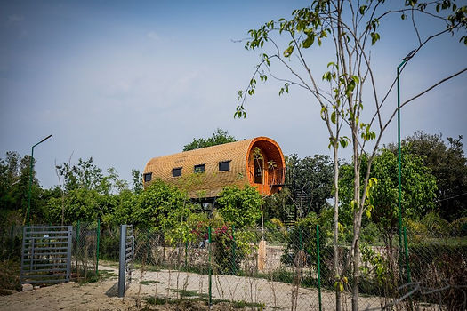 4 Amrut Farm