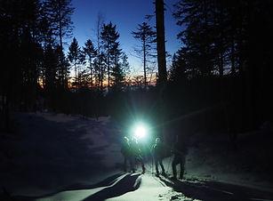 L'appel de la nature randonnée nocturne chartreuse isère