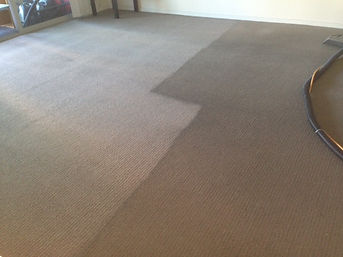 Illawarra Carpet Cleaning Wollonong - Services