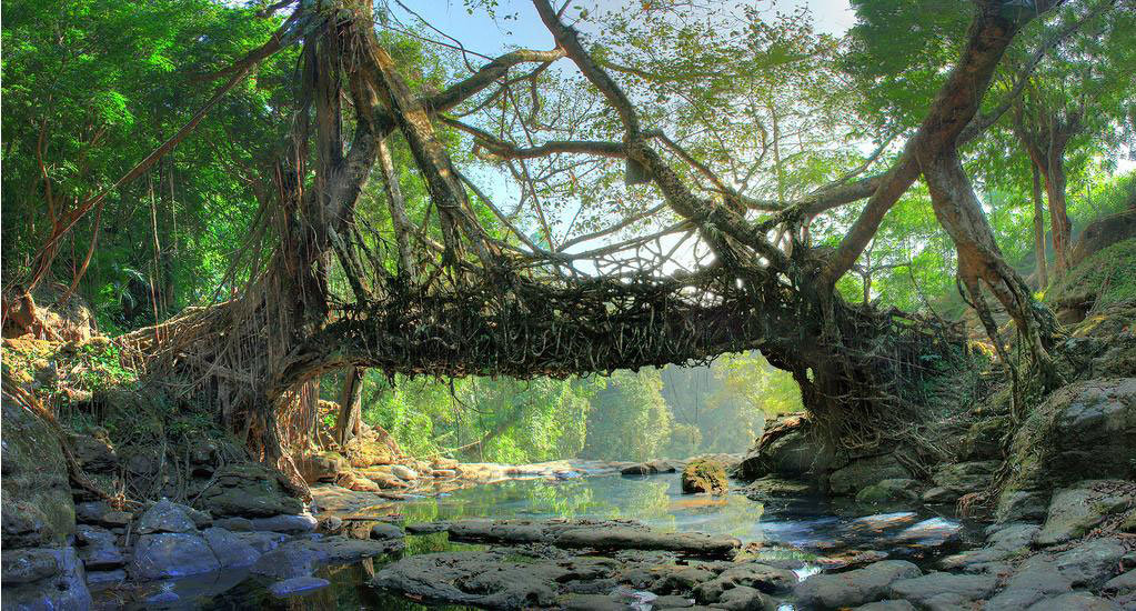 MEGHALAYA TOUR PACKAGES